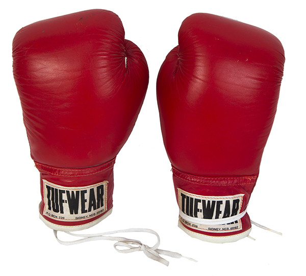 Rocky III Boxing Gloves